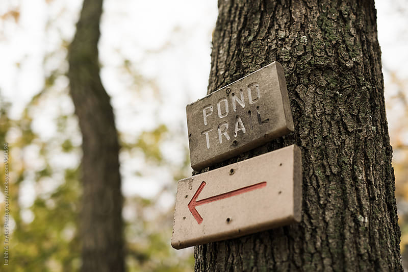 Trailhead sign by Isaiah & Taylor Photography for Stocksy United