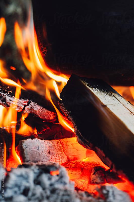 Campfire  by Dimitrije Tanaskovic for Stocksy United