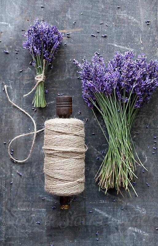 Lavender by Mental Art + Design for Stocksy United