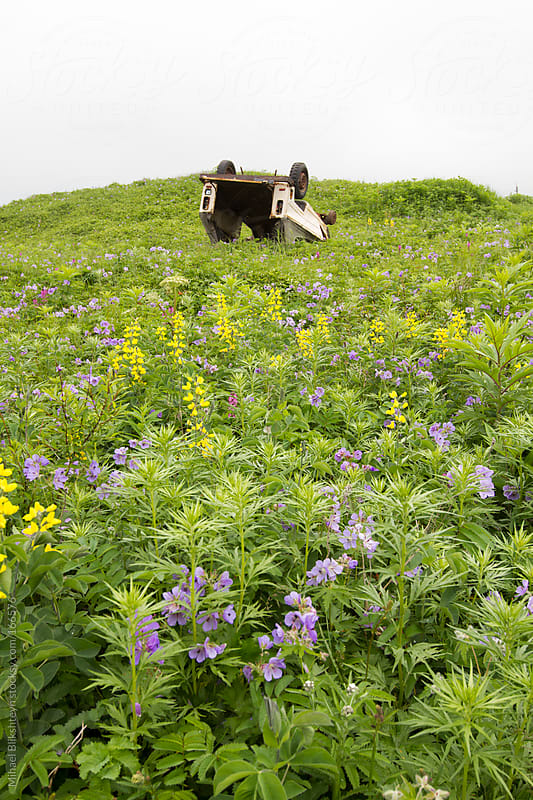 Overturned and abandoned car in a field of flowering wildflowers by Mihael Blikshteyn for Stocksy United