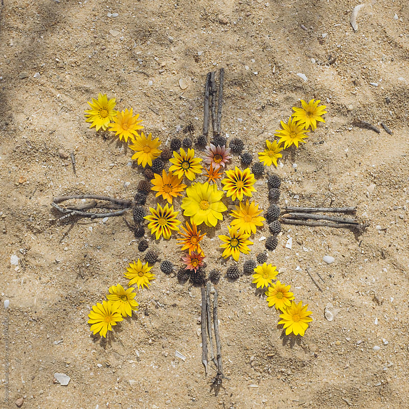 Arranged flowers and twigs on sand by Robert Lang for Stocksy United
