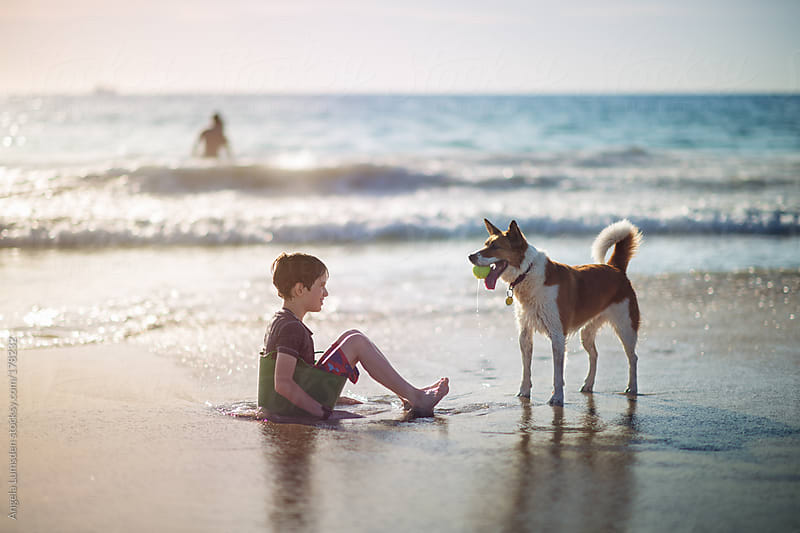 Boy sitting in a bucket at the beach with a dog by Angela Lumsden for Stocksy United