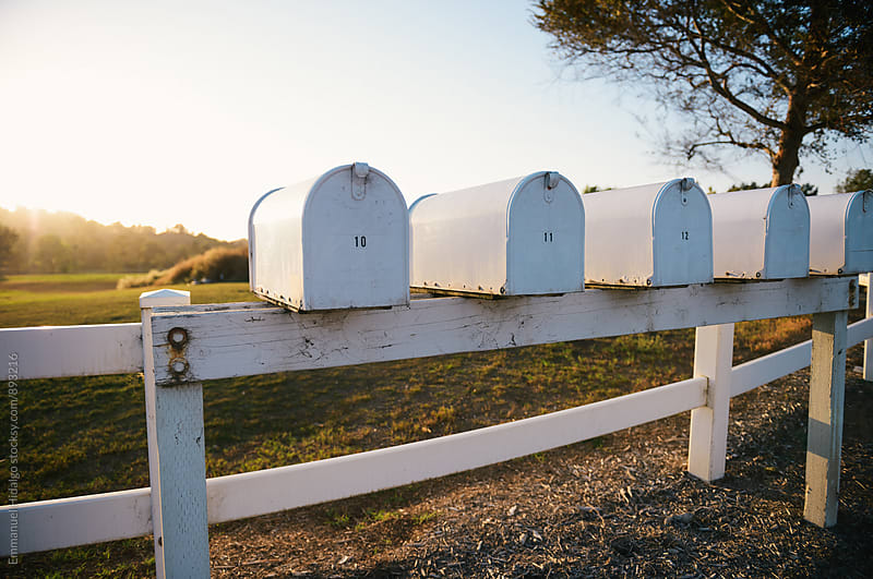 Multiple white mailboxes line a wooden fence by Emmanuel Hidalgo for Stocksy United
