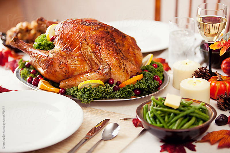Thanksgiving: Beautiful Thanksgiving Turkey by Sean Locke for Stocksy United