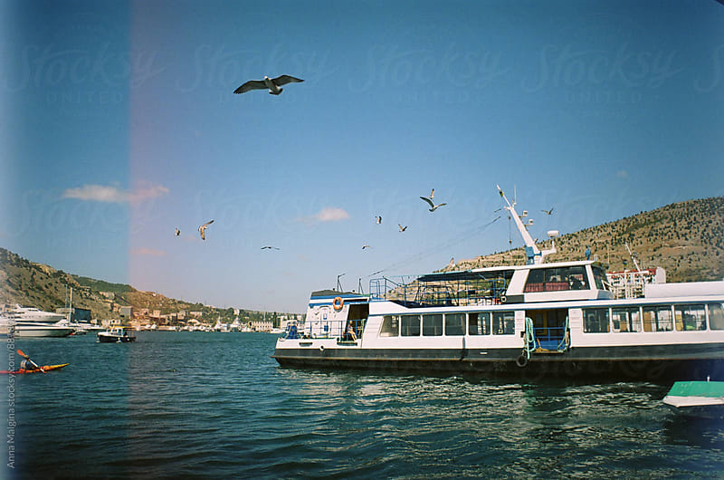 A film photo of sea harbour with seagulls and boats by Anna Malgina for Stocksy United