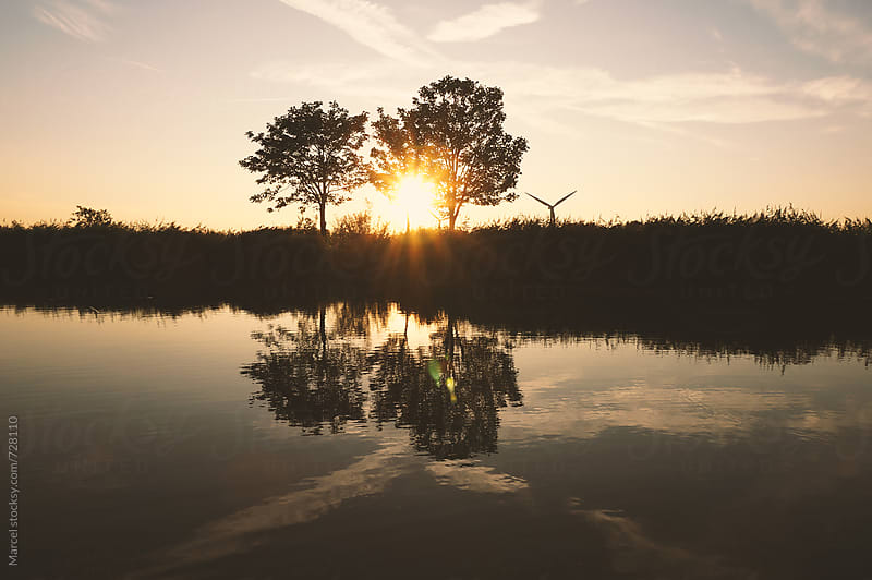 Sunset and trees, seen from the river by Marcel for Stocksy United
