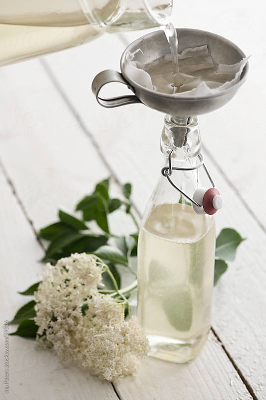 Food: Homemade Elderflower Syrup by Ina Peters for Stocksy United