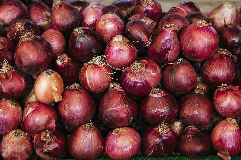 Shallots onion by Borislav Zhuykov for Stocksy United