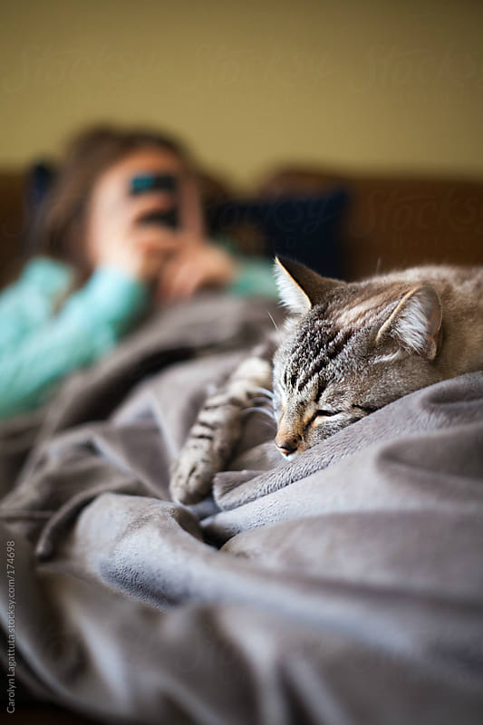 Siamese cat laying on the lap of her teen owner who is on her electronic device by Carolyn Lagattuta for Stocksy United