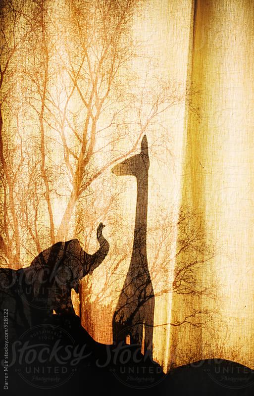 Windowsill Safari. by Darren Muir for Stocksy United