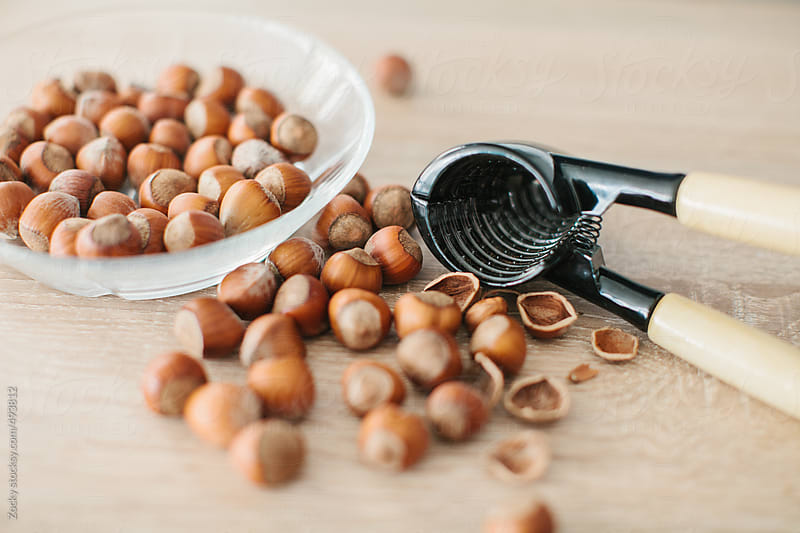 Hazelnuts by Zocky for Stocksy United