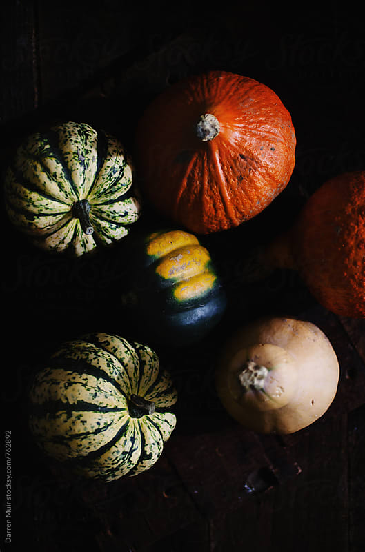 Various types of squash on dark background. by Darren Muir for Stocksy United