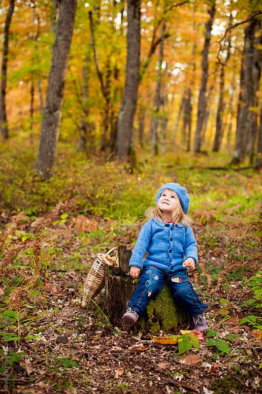 The girl with mushrooms by Sveta SH for Stocksy United