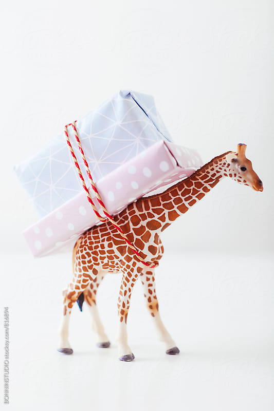 Toy giraffe carrying Christmas gifts on white. by BONNINSTUDIO for Stocksy United
