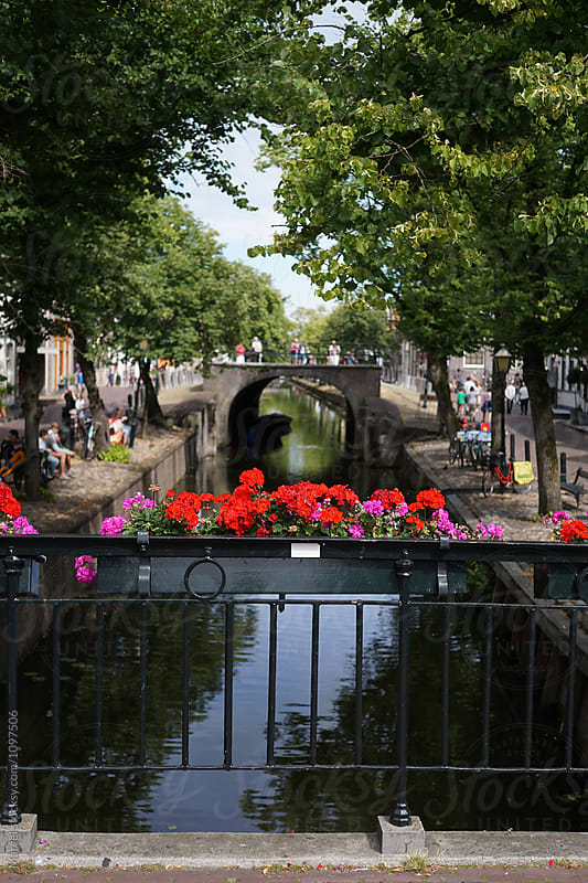 Flowers and Dutch canal by Marcel for Stocksy United