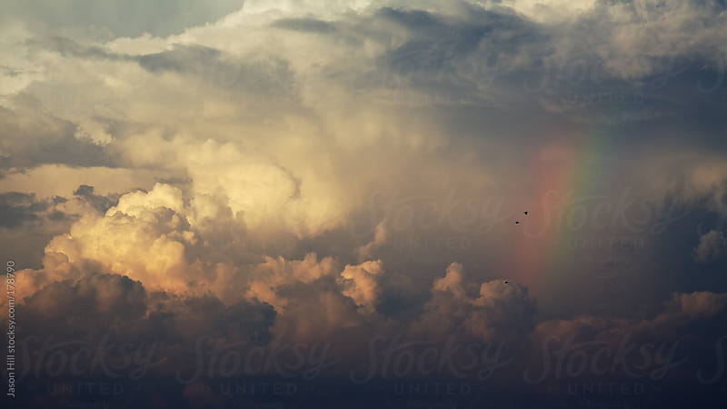 Photo of clouds, rainbows and birds by Jason Hill for Stocksy United