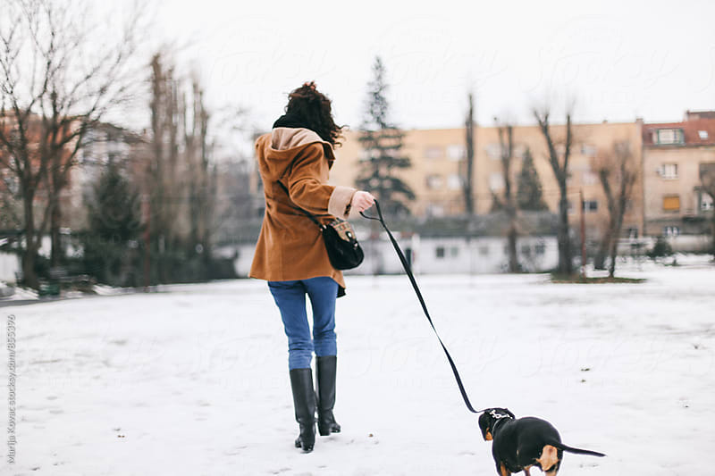 Woman having fun with her dog on a winter day, from behind by Marija Kovac for Stocksy United