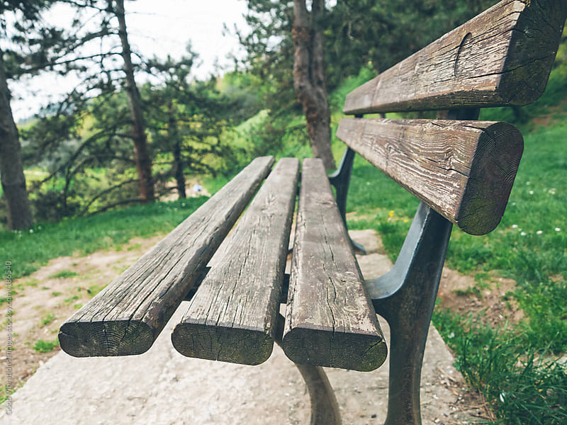 Bench in the Park by Good Vibrations Images for Stocksy United