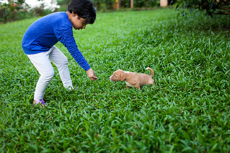 Child feeding a puppy in the lawn by Saptak Ganguly for Stocksy United