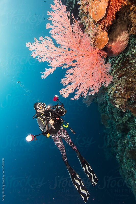 underwater photographer with sea fan by Song Heming for Stocksy United