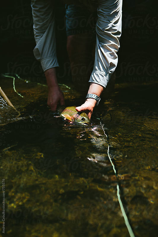 fly fishing  by Andrew Cebulka for Stocksy United