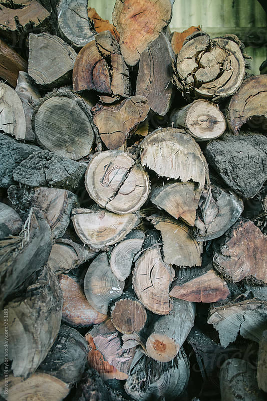 Winter Firewood Stacked in Shed by Rowena Naylor for Stocksy United