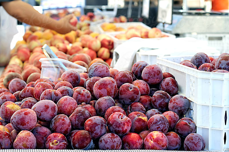 Plums and peaches for sale at the local farmers market by Monica Murphy for Stocksy United