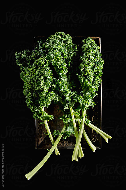 Raw Kale on Black by Studio Six for Stocksy United