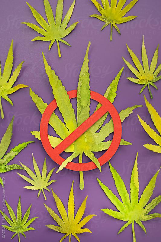 Marijuana by CACTUS Blai Baules for Stocksy United