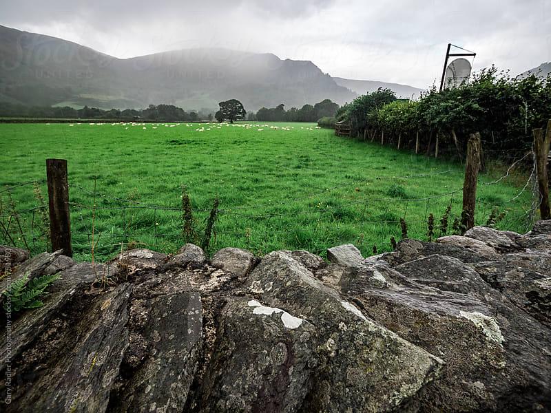 Dry Stone Wall on a Sheep Farm, Borrowdale, England by Gary Radler Photography for Stocksy United