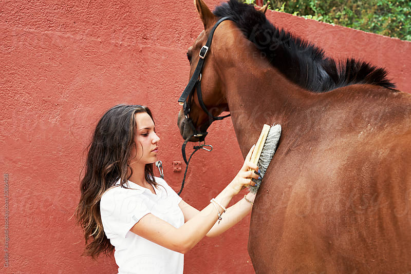 Pretty jockey grooming brown horse by Guille Faingold for Stocksy United