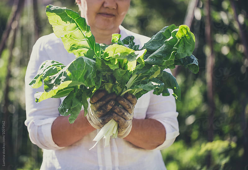 Woman Holding Greenery Vegetables by Lumina for Stocksy United