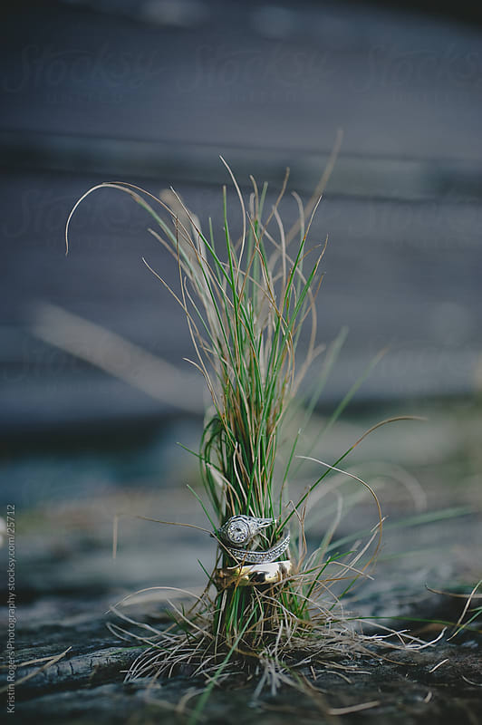 Wedding rings with grass sprouting out the top by Kristin Rogers Photography for Stocksy United