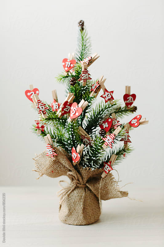 Christmas tree by Davide Illini for Stocksy United