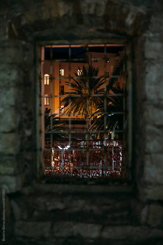 Palm tree and market seen from a window with bars  by Beatrix Boros for Stocksy United