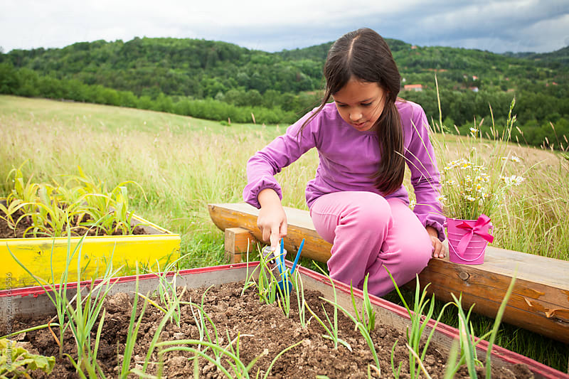 Little girl working in a garden. by Mosuno for Stocksy United