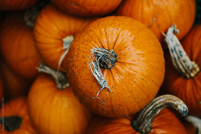 Pumpkins in a stack by kkgas for Stocksy United