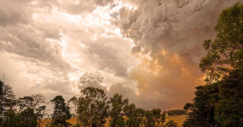 bushfire in the Adelaide Hills by Gillian Vann for Stocksy United
