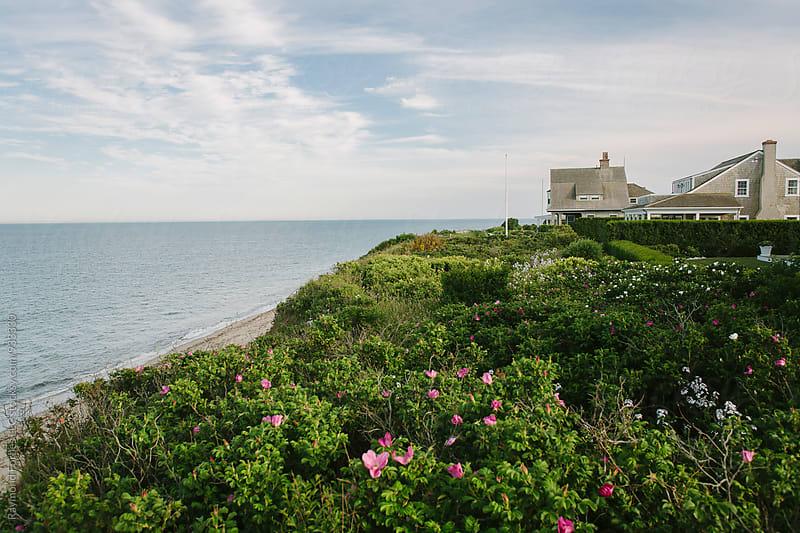 Nantucket Summer by Raymond Forbes LLC for Stocksy United