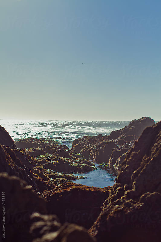 coastal rocks and a tidepool  by Jess Lewis for Stocksy United