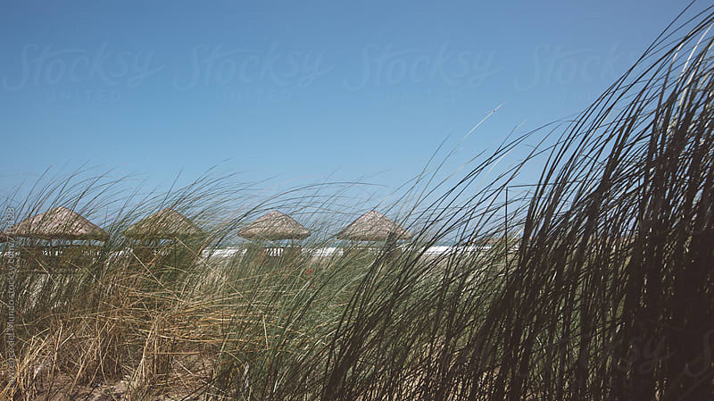 Low angle landscape shot, with grassy foreground, of four huts near the beach by Lawrence del Mundo for Stocksy United