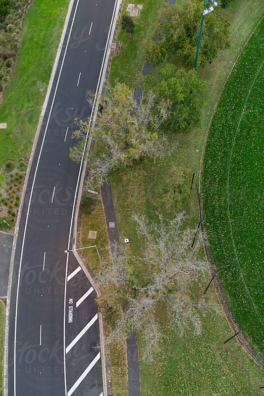 Overhead view of roadway, autumn trees and parkland by Ben Ryan for Stocksy United
