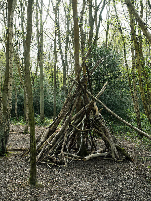 Half completed den or shelter made of sticks in the woods by DV8OR for Stocksy United