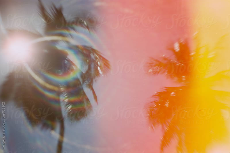 sun flare and light leak image of palm trees with rainbow flare by wendy laurel for Stocksy United