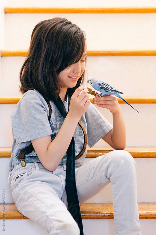 Young boy training his pet bird by Kelli Seeger Kim for Stocksy United