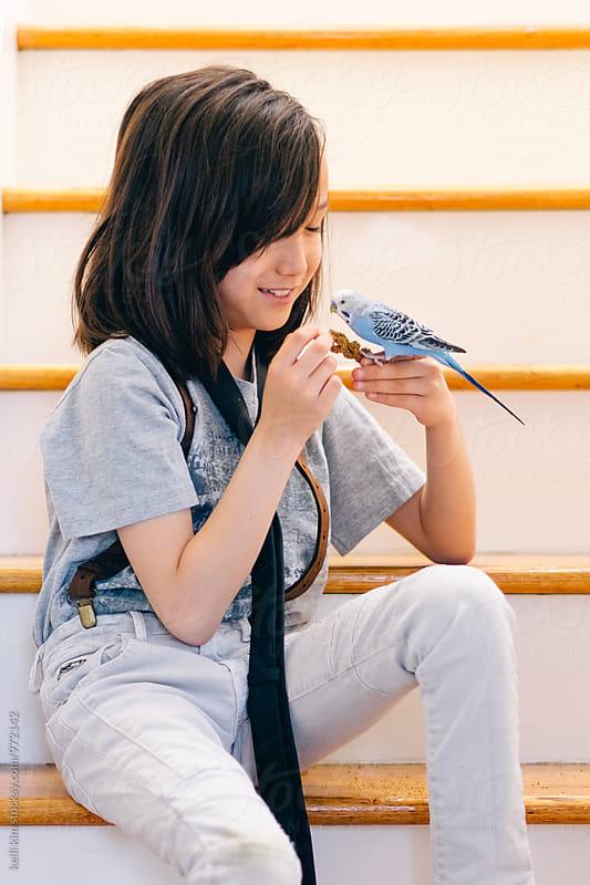 Young boy training his pet bird by kelli kim for Stocksy United