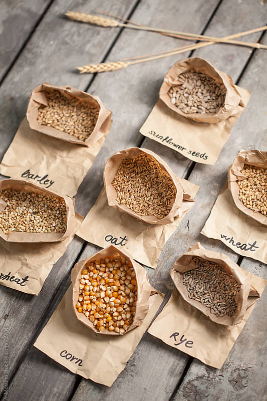 Organic Grains on a Wooden Table by Mosuno for Stocksy United