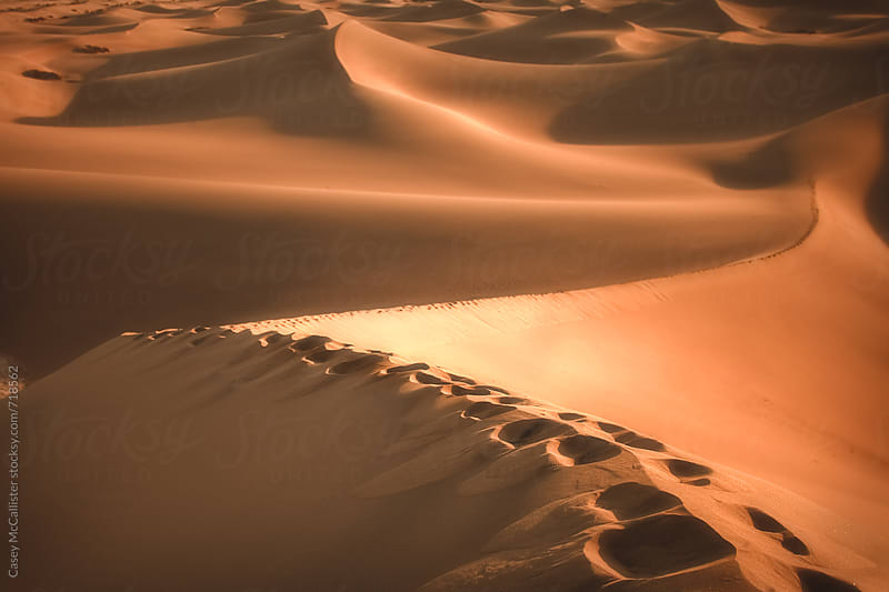 Rolling Sand Dunes by Casey McCallister for Stocksy United