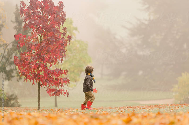 Boy walking through Fall scene by Rebecca Spencer for Stocksy United