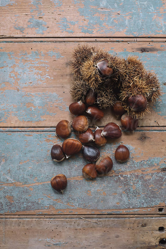 Organic Chestnuts by Rowena Naylor for Stocksy United